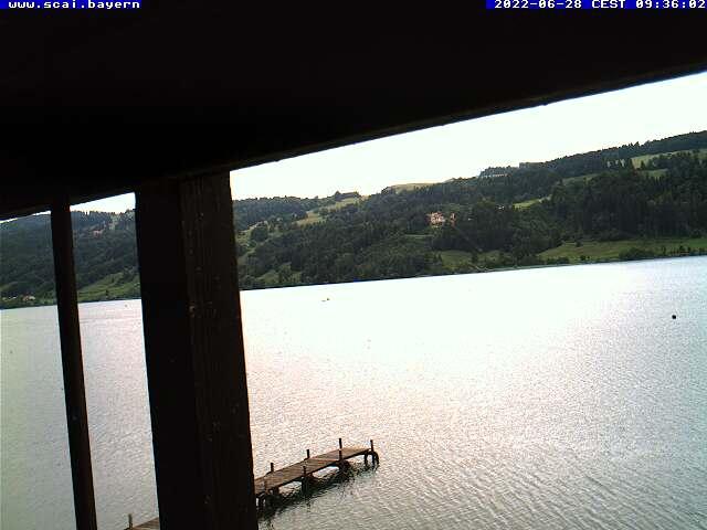 Webcam am Alpsee am SCAI Segelclub Alpsee-Immenstadt e.V. mit Blick über den großen Alpsee Richtung Norden